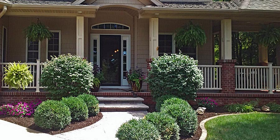 landscaping home exterior walkway shrubs