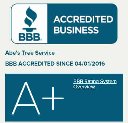 BBB - Only A+ Rated Tree Service in Wichita