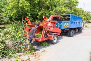 Cheap Tree Service Wichita KS Mulching Tree Limbs